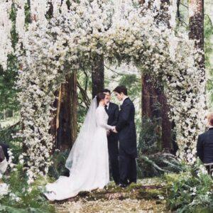 wedding-scene-twilight-2