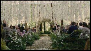 wedding-scene-twilight