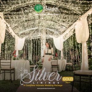 Silver Lining Wedding promo gold