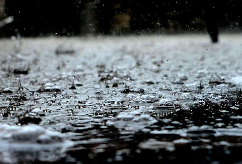 drops, rain, rain drops